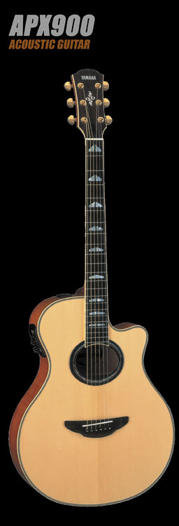 Acoustic Electric Guitars Retail Up Music Demo