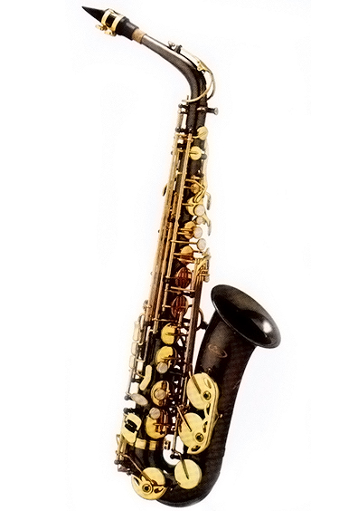 Palm Winds, Palm Winds Black/Gold Alto Sax